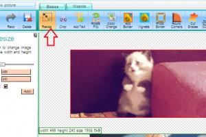 Cum să redimensionezi o imagine .gif sau .png fără sa pierzi animaţia acesteia
